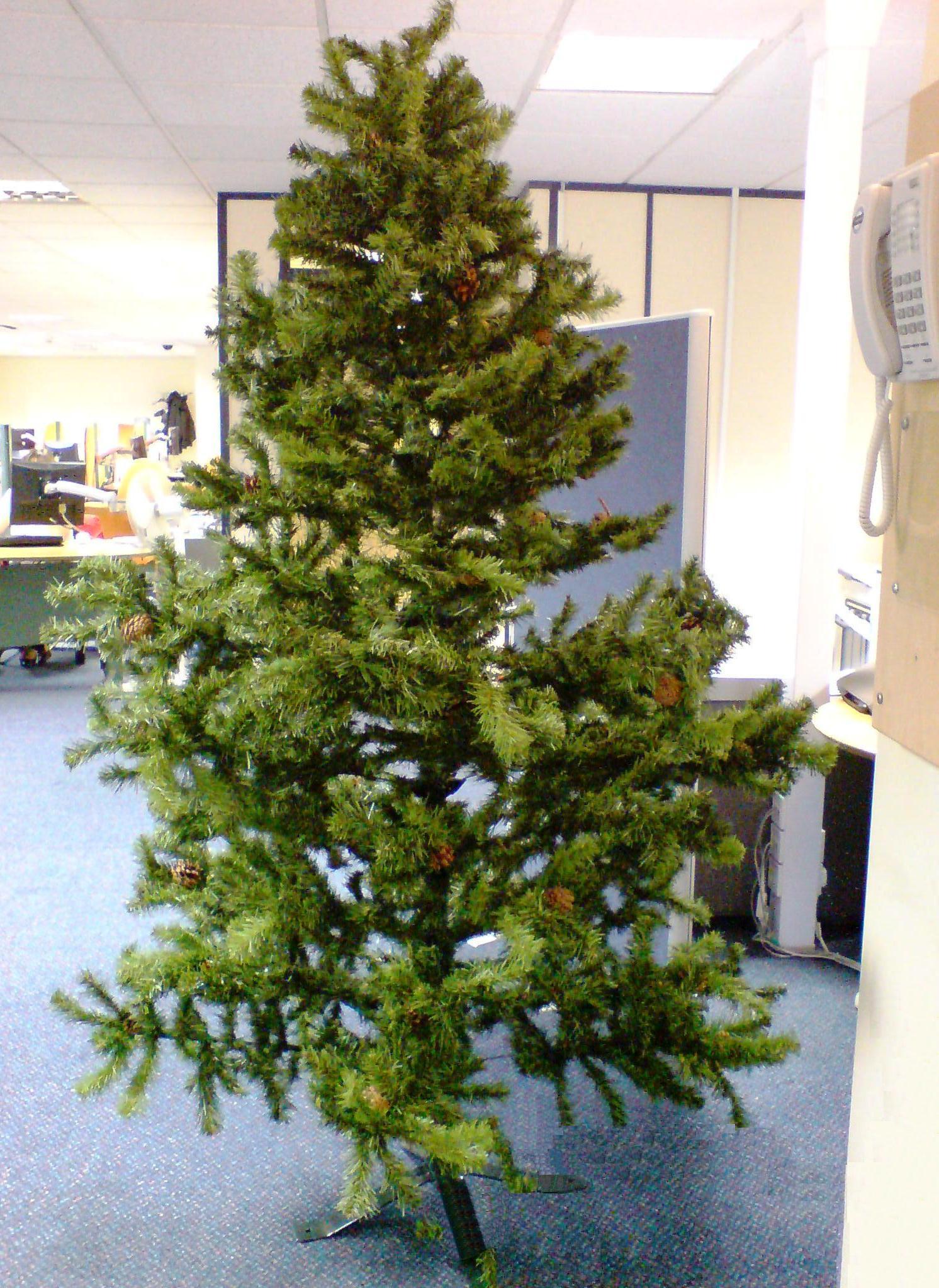 Tree Naked 117